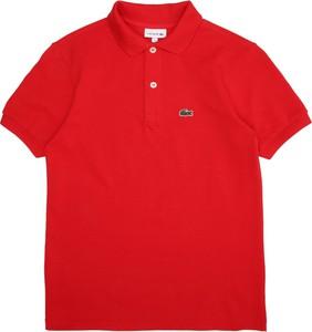 Czerwona koszulka dziecięca Lacoste