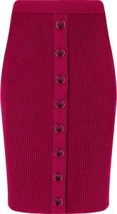 Spódnica Pinko w stylu casual mini