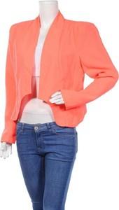 Pomarańczowa marynarka Kardashian Kollection krótka