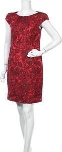 Czerwona sukienka ASHLEY BROOKE mini prosta z krótkim rękawem