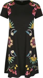 Sukienka Desigual mini prosta z krótkim rękawem