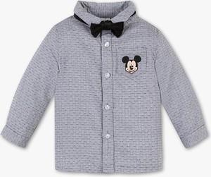 Koszula dziecięca Baby Club z bawełny dla chłopców