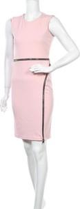 Różowa sukienka Plume bez rękawów z okrągłym dekoltem