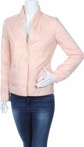Różowa kurtka New York Industrie krótka
