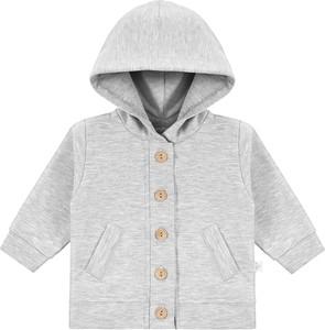 Bluza dziecięca Ewa Collection z bawełny dla chłopców