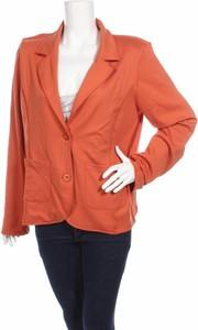 Pomarańczowa marynarka Ivy Beau na guziki krótka