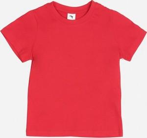 Czerwona koszulka dziecięca Multu z bawełny